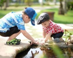 Познавательные способности – потенциал развития дошкольников