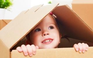 Познавательная деятельность в дошкольном возрасте