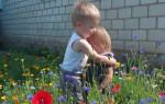 Нравственное воспитание: как формируются основы морали у дошкольников