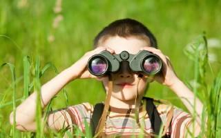 Познавательная активность дошкольника: двигатели и стимулы развития
