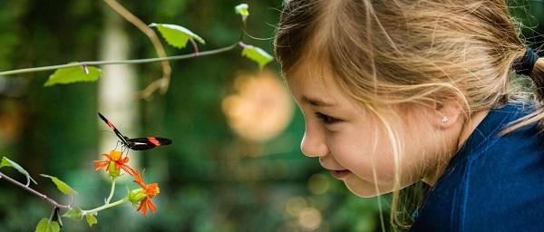Ребенок познает окружающий мир